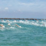 OWS大会に向けて実施したい「泳ぎ込み」とは?